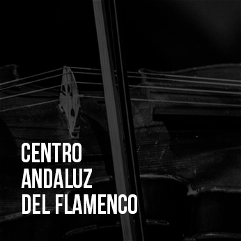 centro_andaluz